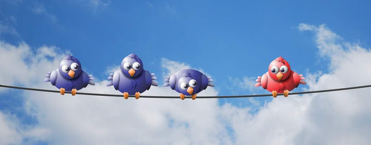rules of social media